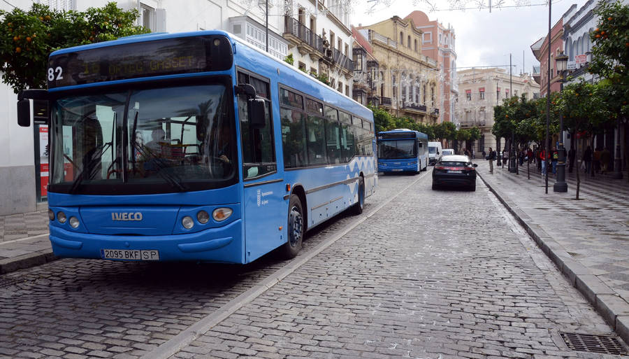 autobuses-gratis-en-jerez-por-la-celebracion-de-la-ciudad-sin-mi-coche