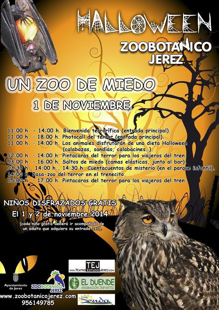 Halloween en el Zoobotnico Jerez--dcabrerac-20141030114259