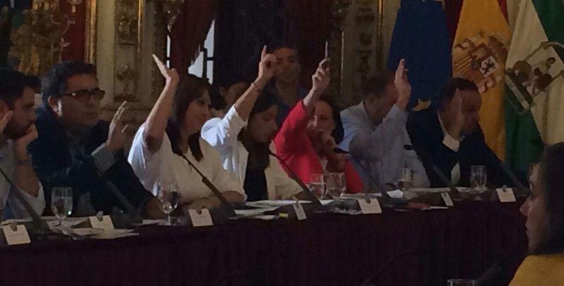 El PSOE en Diputacion de Cádiz se opone a que la Junta de Andalucia ponga en marcha el Servicio de Radioterapia de Jerez   23 Septiembre 2015