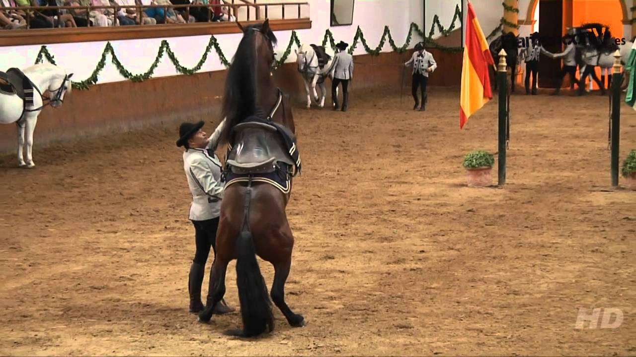 Espectáculo en la Real Escuela Andaluza del Arte Ecuestre.
