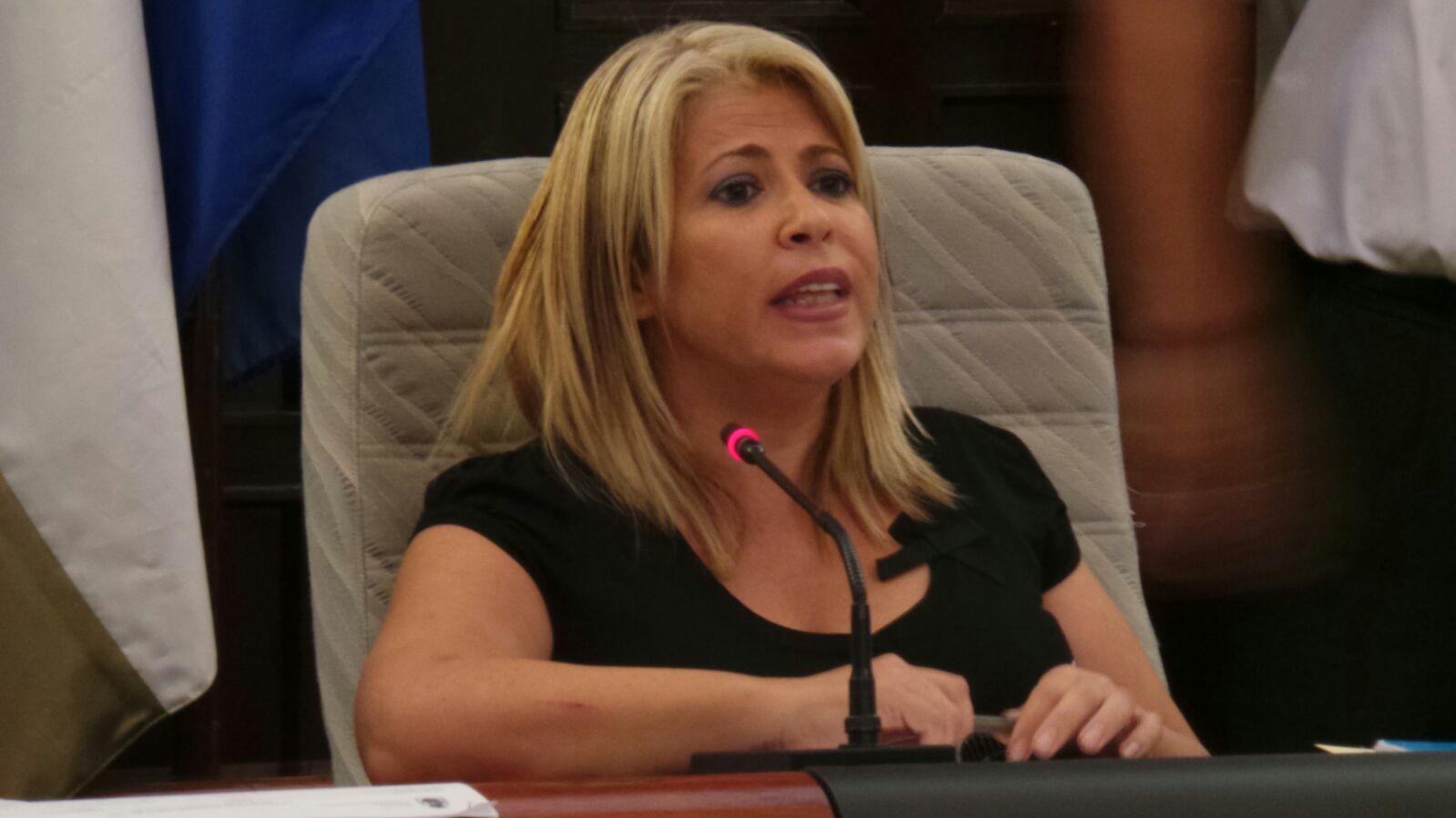 Mamen Sánchez en una sesión plenaria.