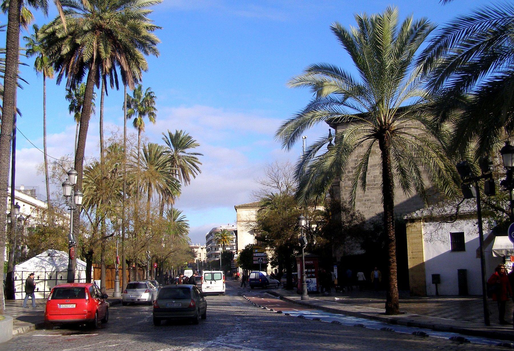 Imagen de la alameda de Cristina en Jerez.