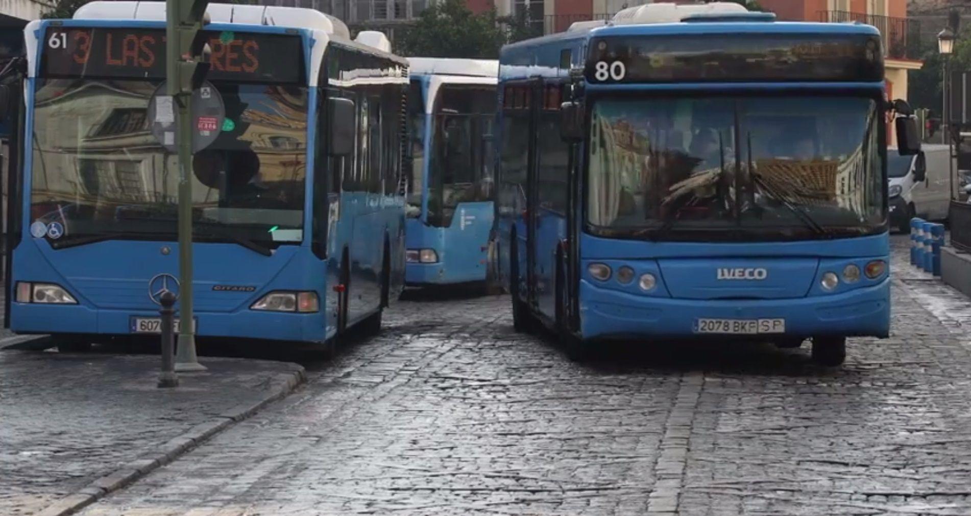 Imagen de autobuses en el centro de Jerez.