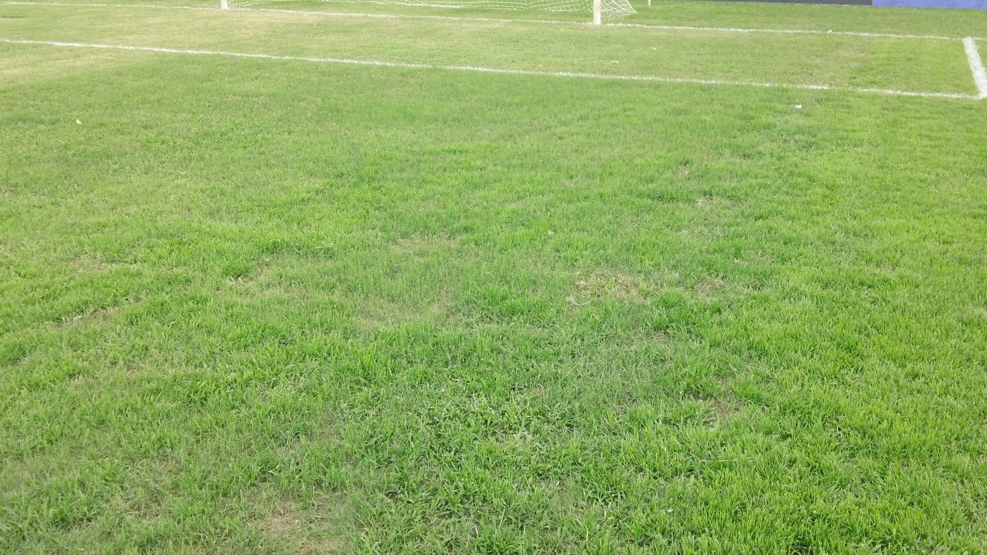 Estadio_7_de_Octubre-cancha7