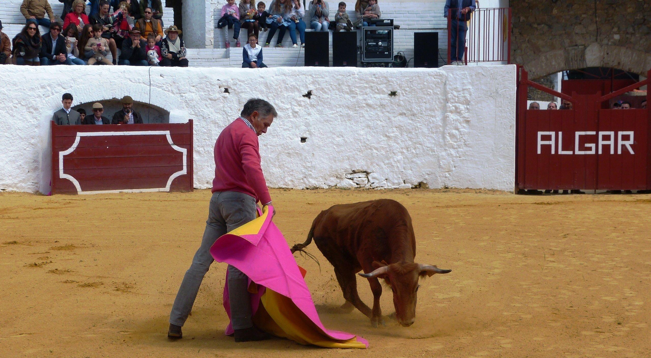 2 Ruiz Miguel