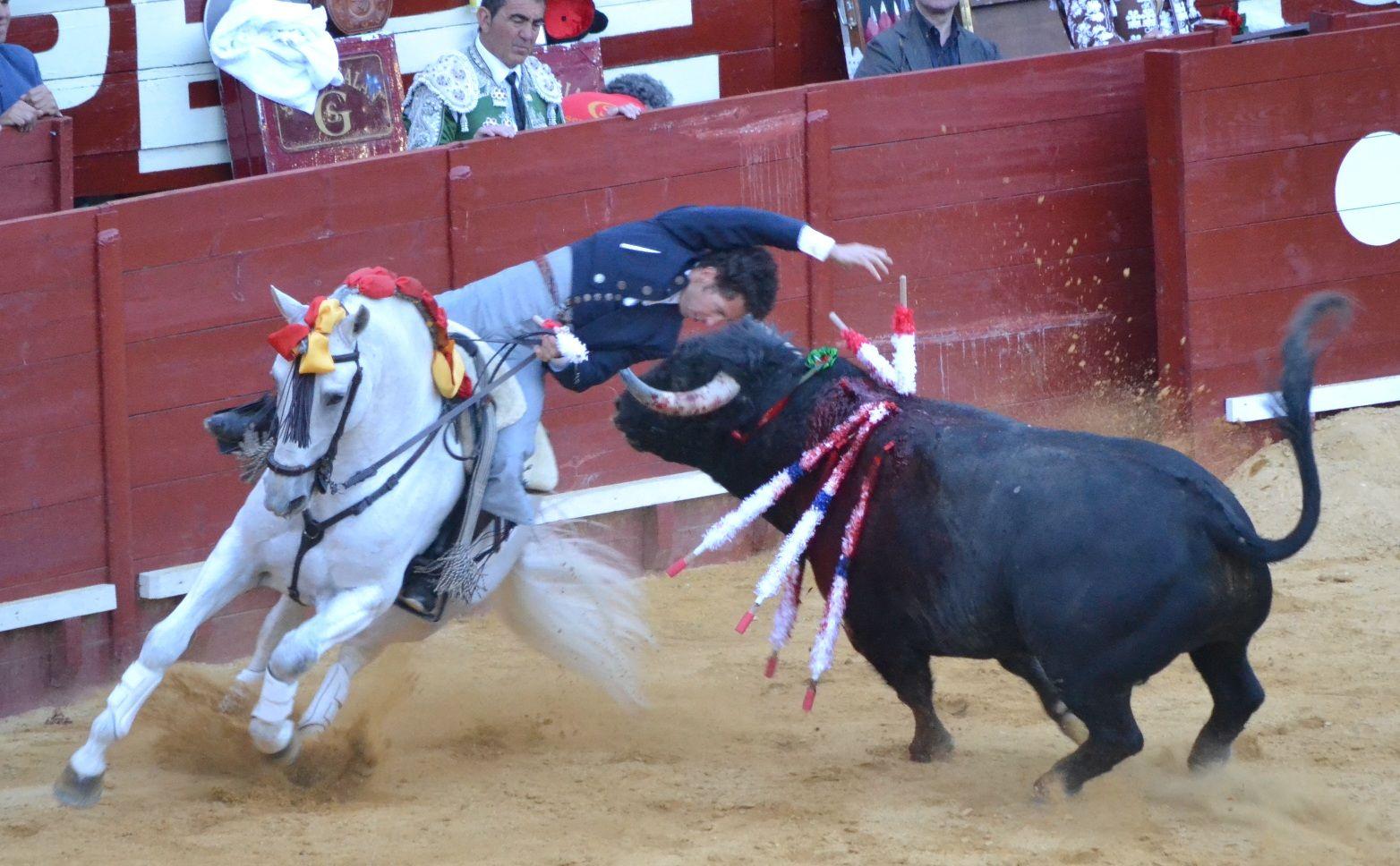 Leonardo Hernández, gran rejonazo después de mucha preparación; dos orejas y rabo; salida por la Puerta Grande | Marciano Breña