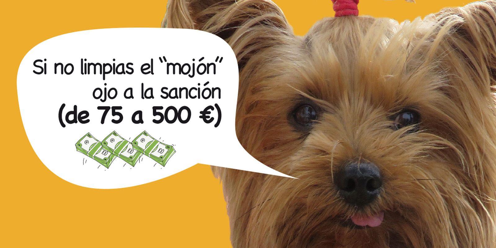 sancion caca perros Jerez
