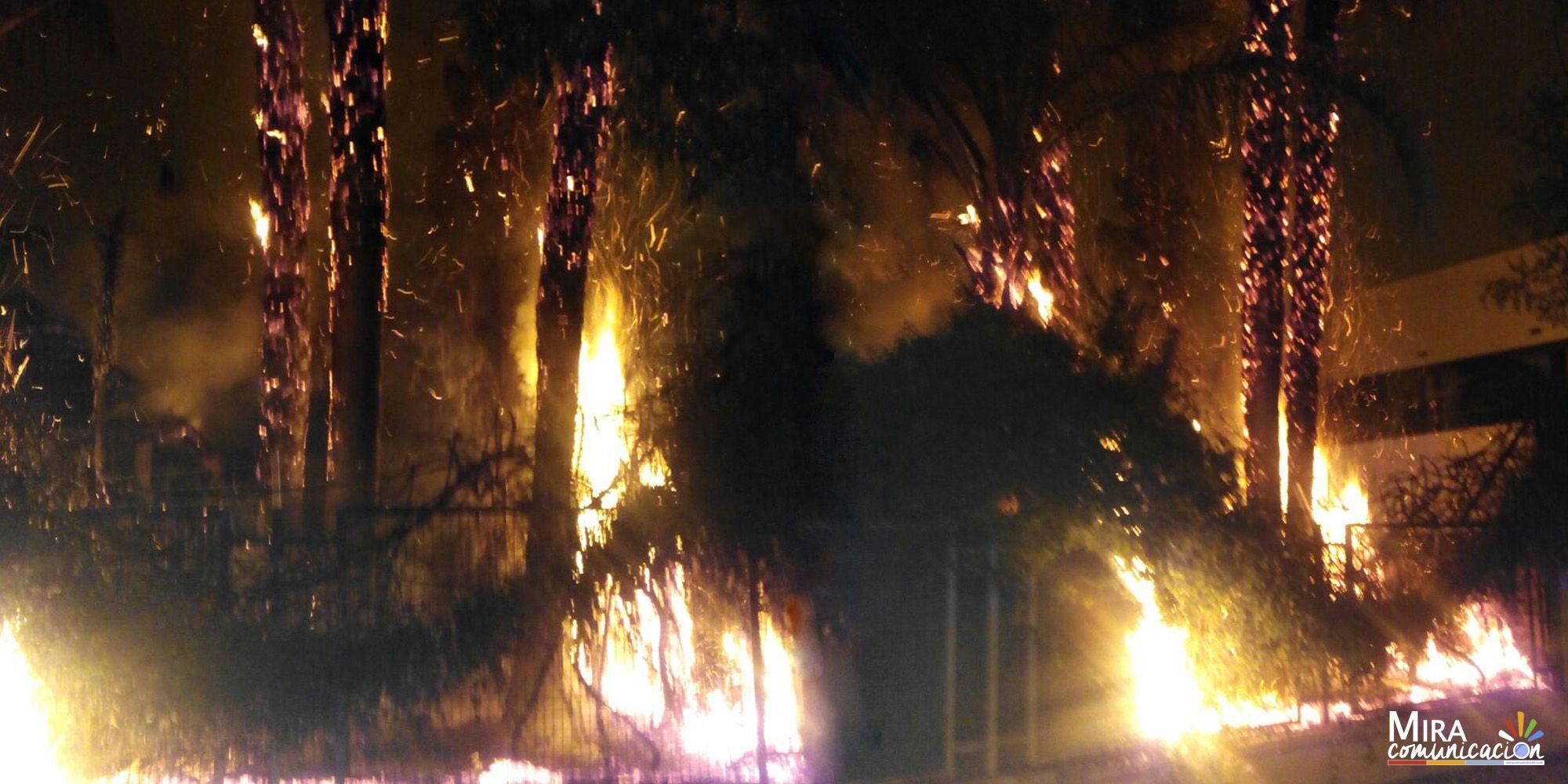 Incendio en vallado, arbustos y árboles de chalet entre Avenida Andalucía y Calle Zeus | MIRA Jerez