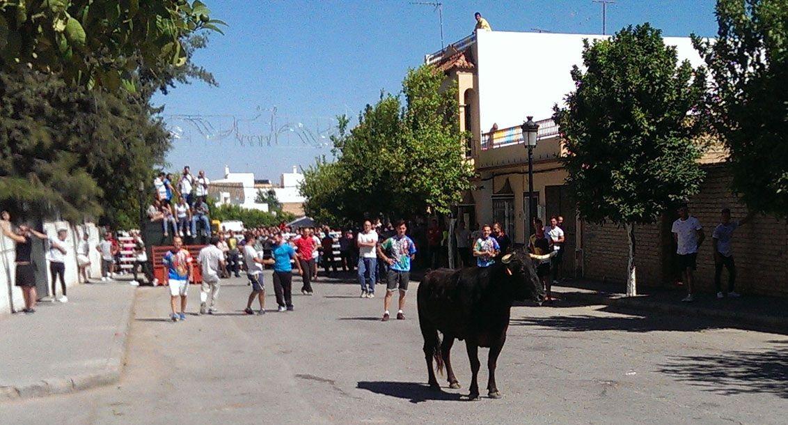 Puerto Serrano, Cádiz