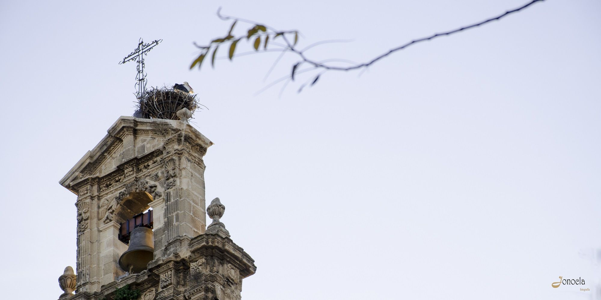 Jonocla campanas Iglesia de Santiago