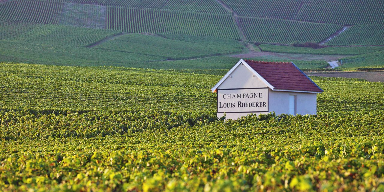 Una de las principales Bodegas de Champagne en Reims es Louis Roederer, una compañíafamiliar  fundada en 1776