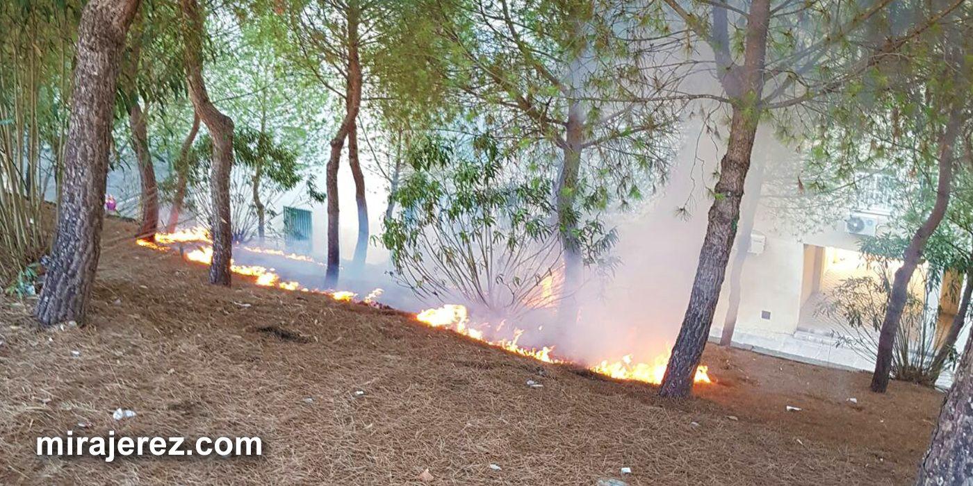 incendio pastos en Jerez