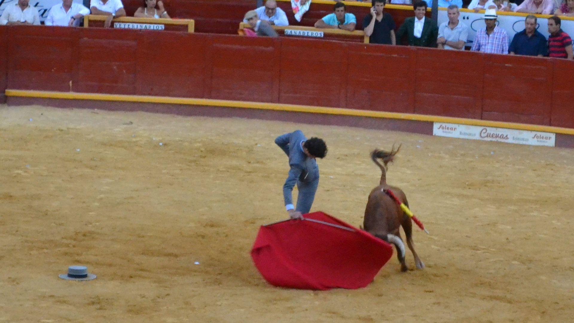 7 Curro