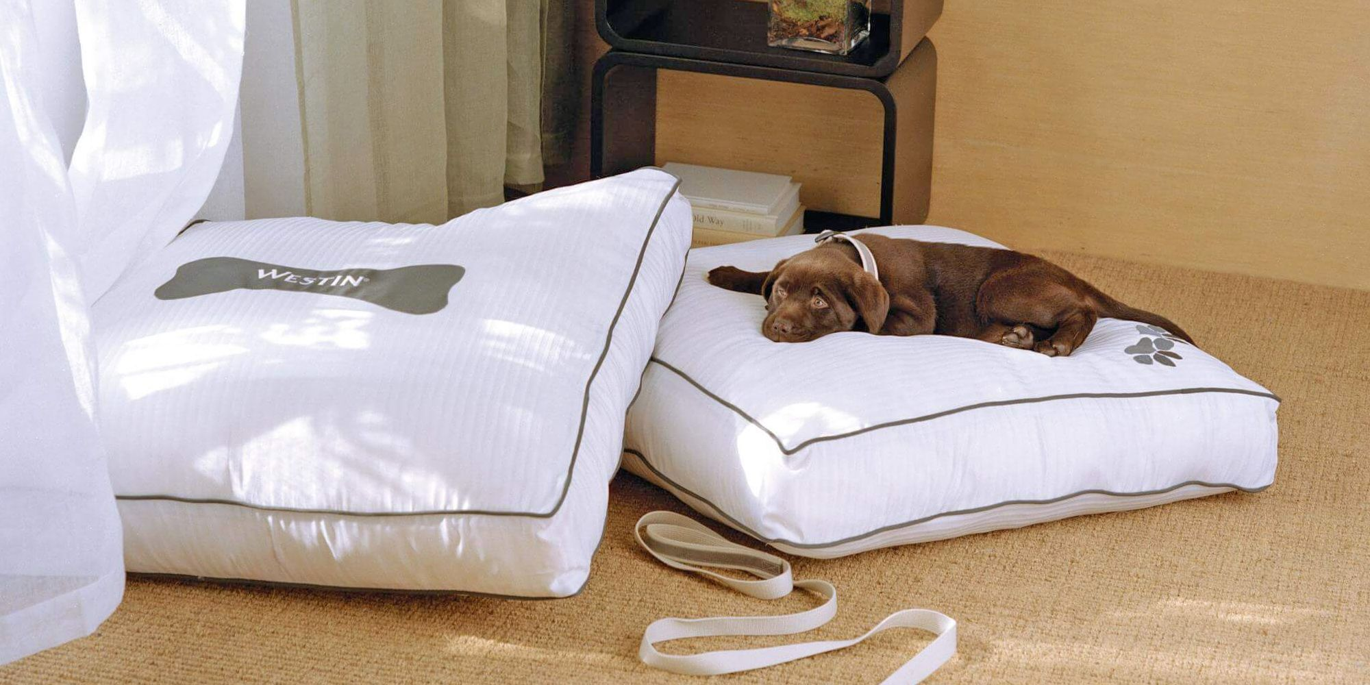 WestinValencia Heavenly dog bed