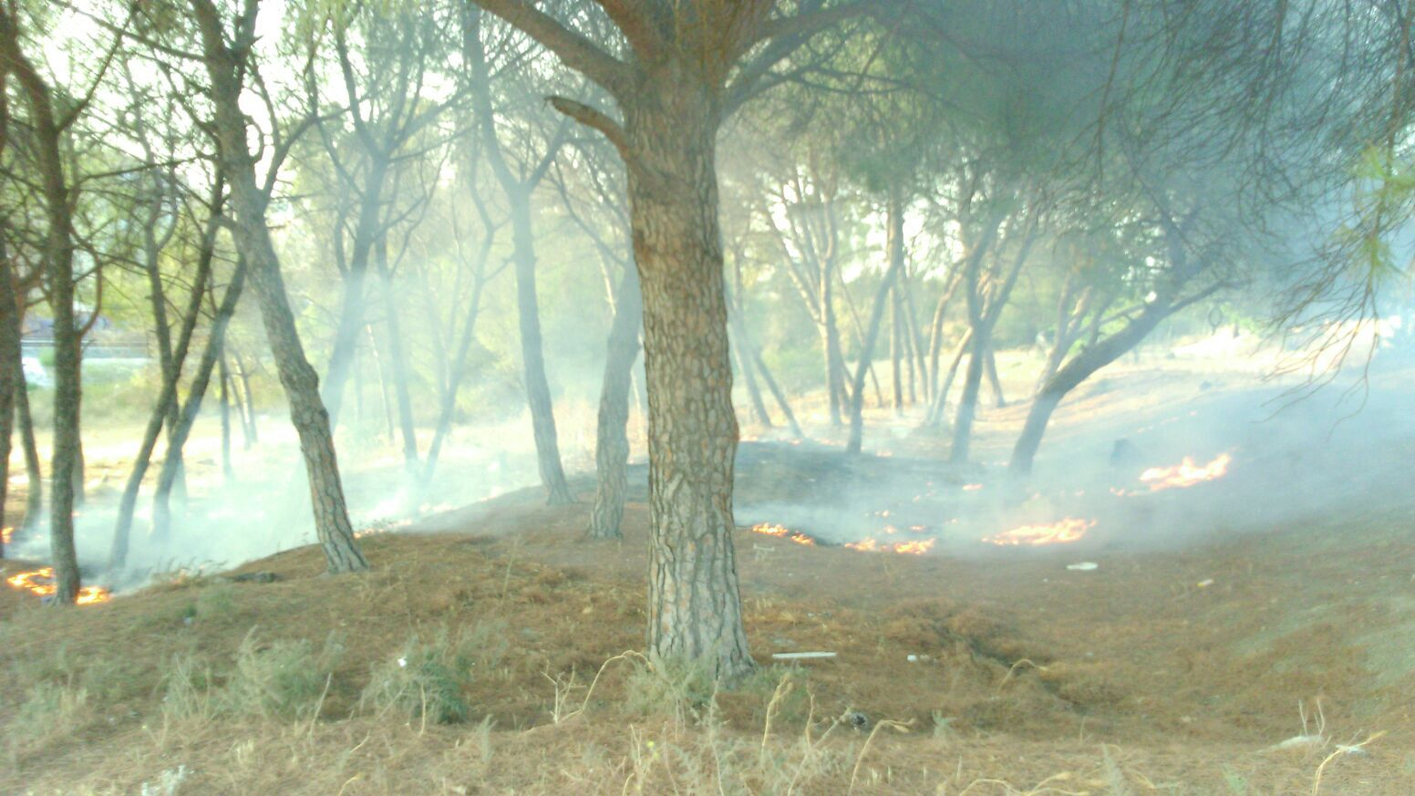 Incendio Pinosolete 2