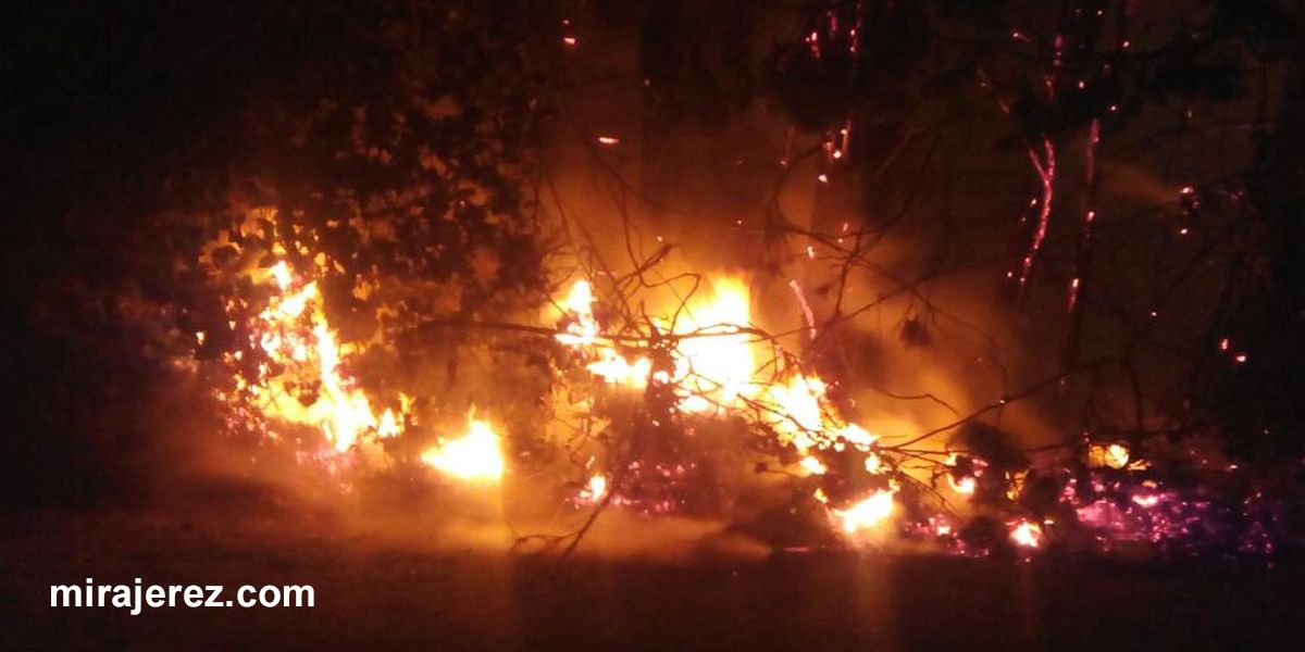 Incendio en Jerez 1