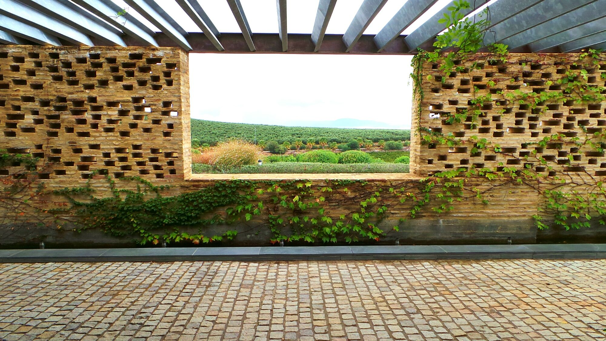 Bodega Entrechuelos de Miguel Domecq, una ventana a tus sentidos   MIRA Jerez