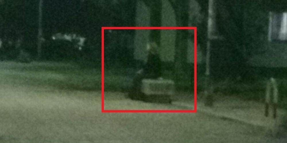 Imagen tomada en la Plaza Ronda de la barriada de La Granja que se ha viralizado por whatsapp en Jerez