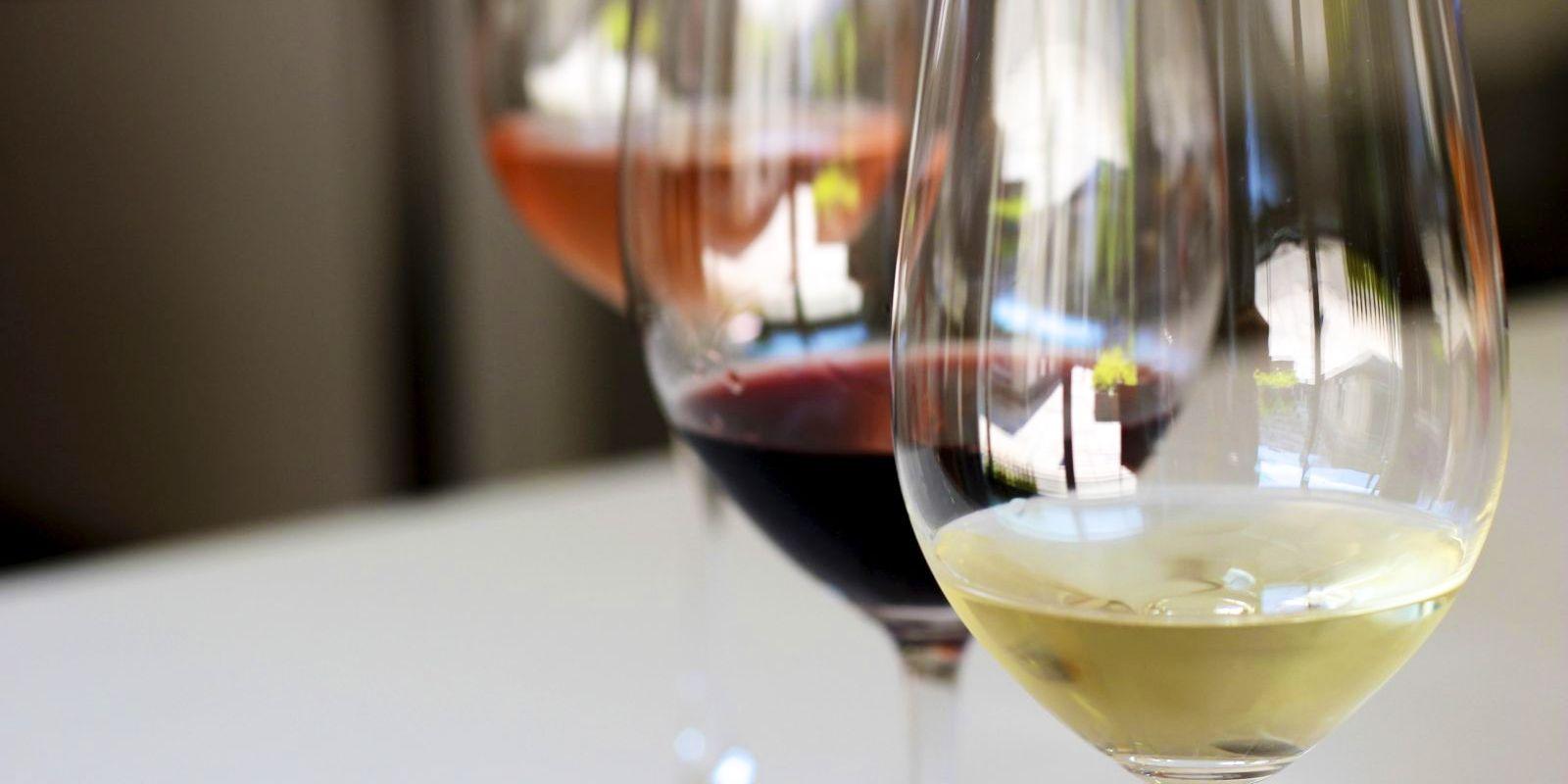 catas-vino