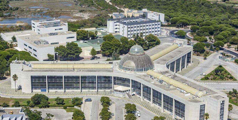 Universidad de Cádiz gestión pública