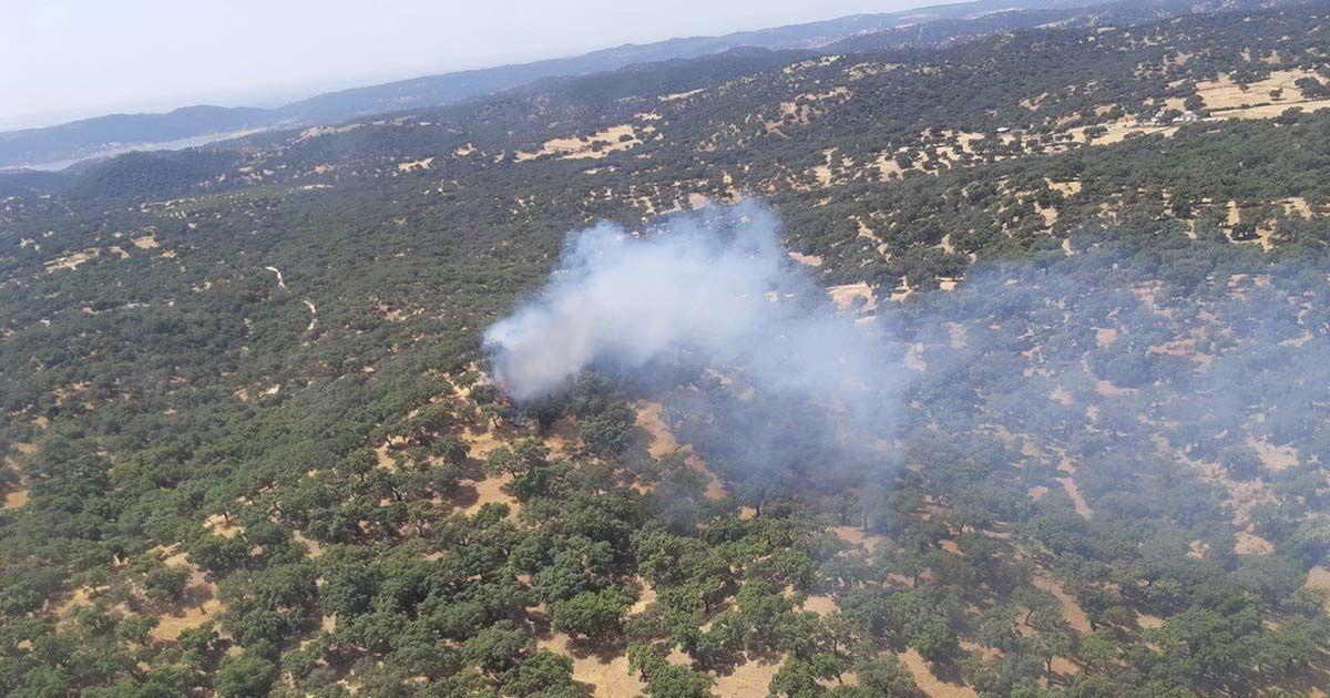 Incendio forestal en La Puebla de los Infantes