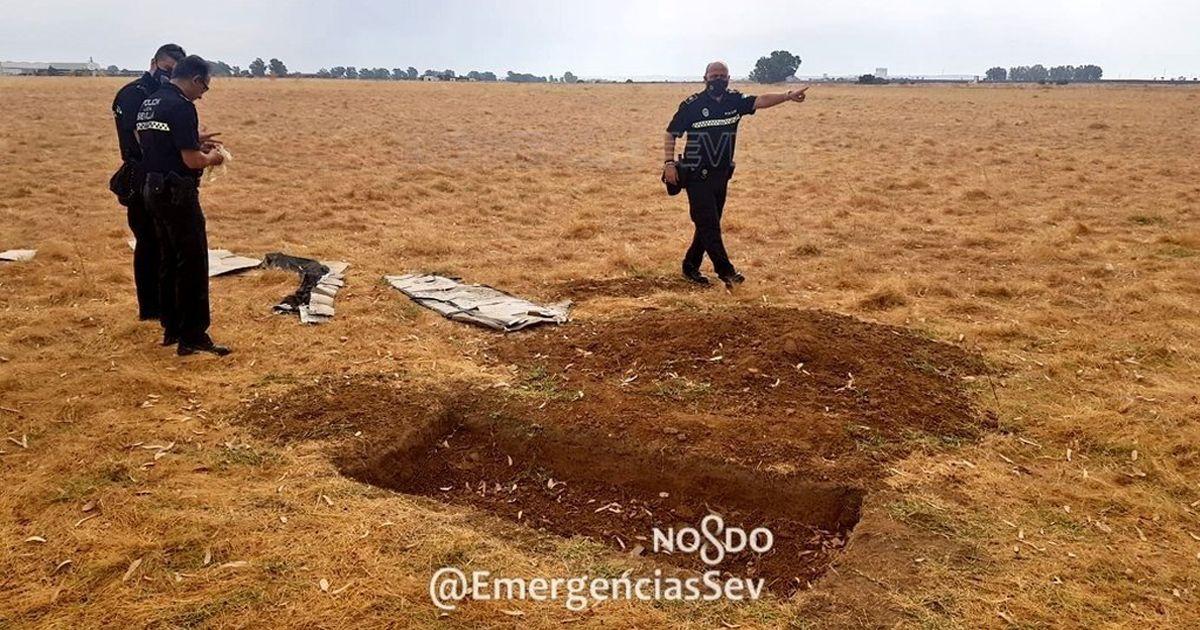 Encuentran un ataúd de cartón y huesos en una parcela de Sevilla Este