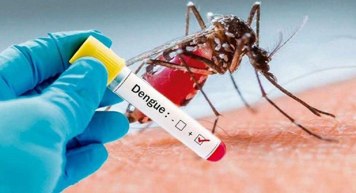 España mosquito dengue méxico hidalgo