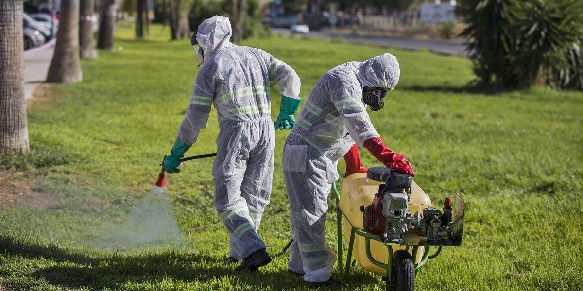 Fiebre del Nilo: el virus se expande por la provincia de Sevilla Barbate