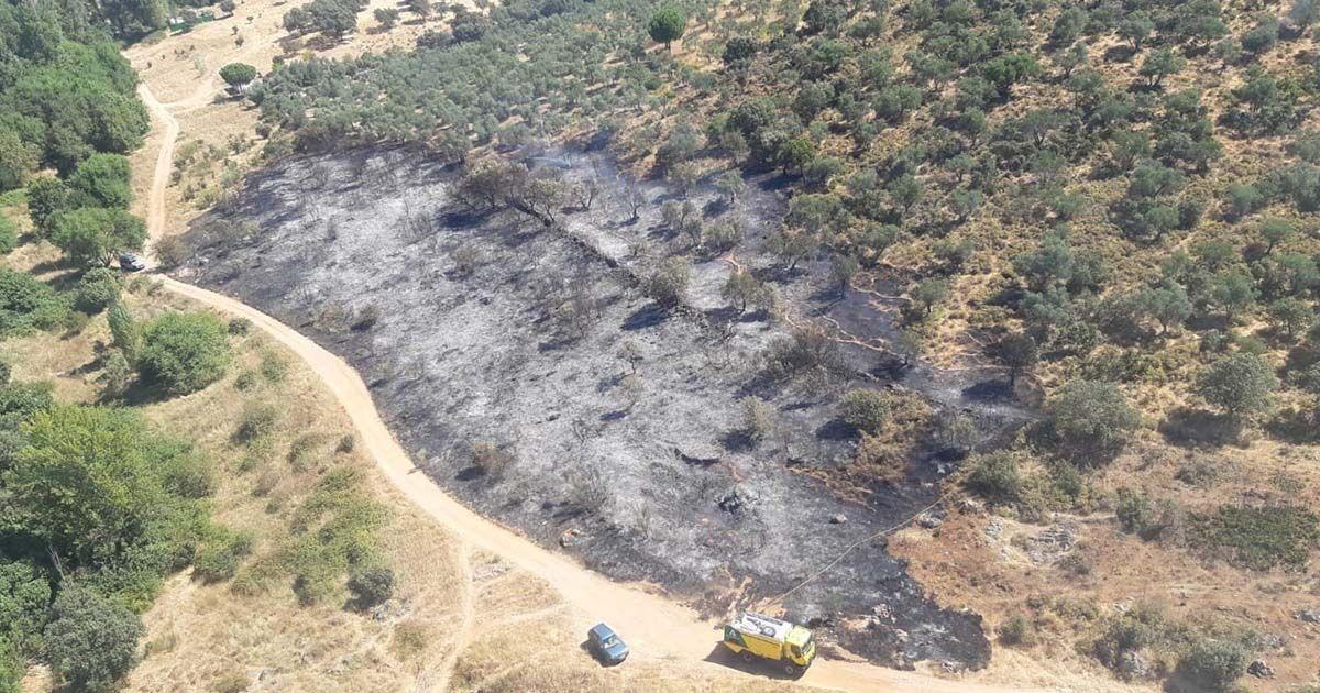 Incendio extinguido en Alanís (Sevilla)