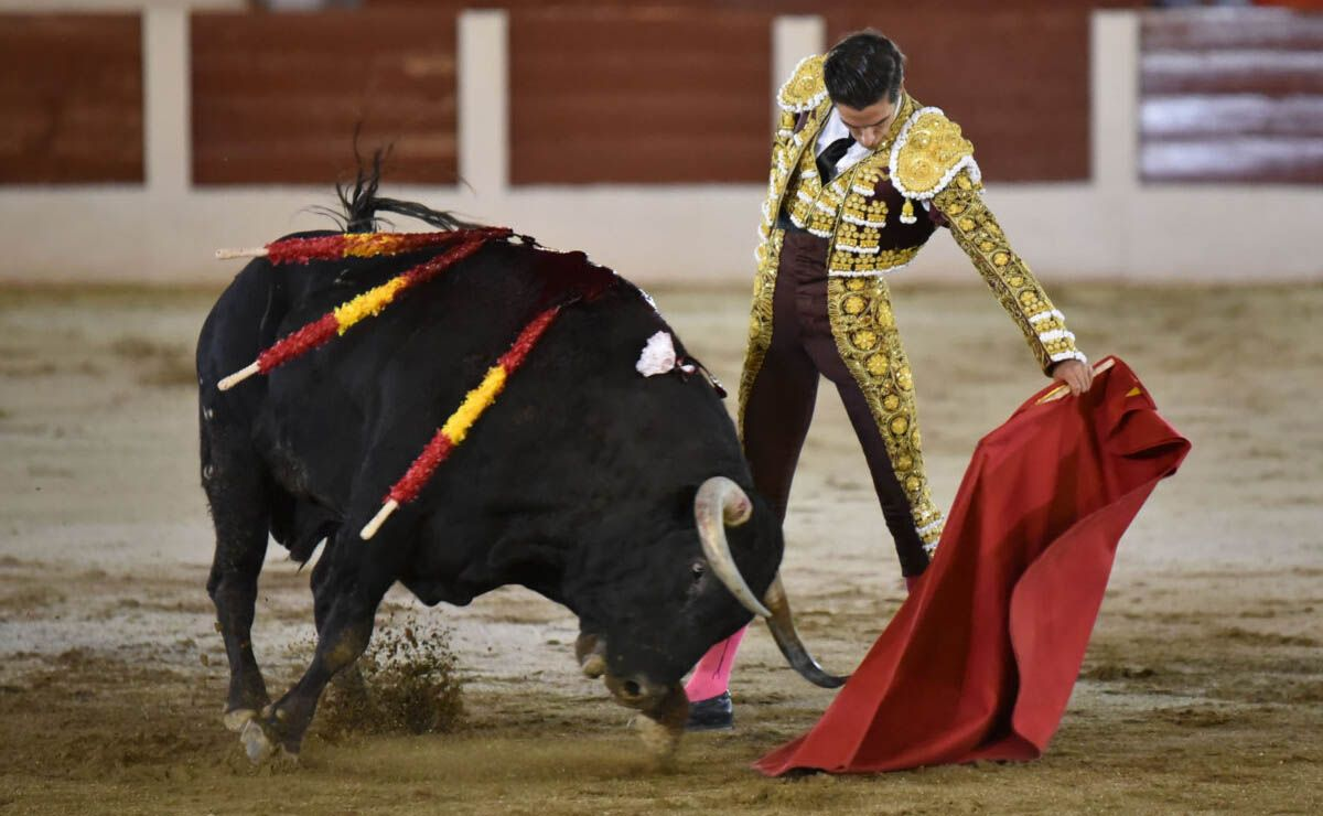 corrida toros Linares Daniel Crespo