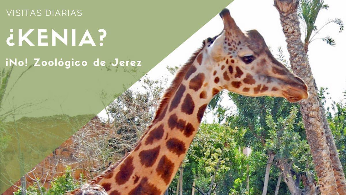Clúster turismo jerezanos Jerez