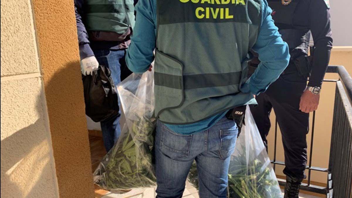 Guardia Civil cannabis Güevéjar