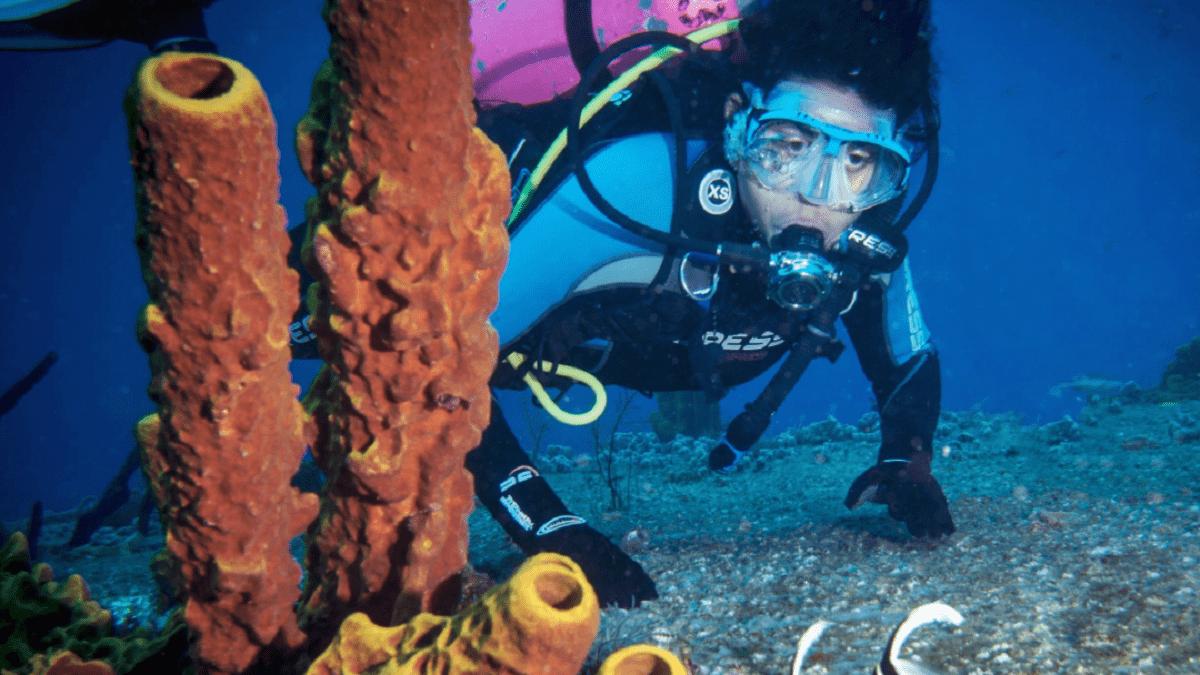 Parque Natural Submarino